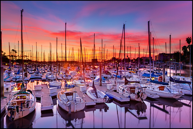 Sailboats in Marina Del Rey